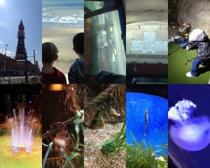 Blackpool Tower Attractions